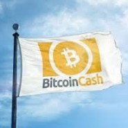 Bitcoin Cash (BCH) Review – peer-to-peer digital cash