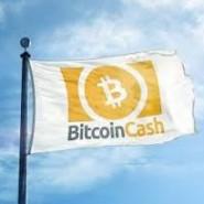 Bitcoin Cash (BCH) Review – peer-to-peer digital cash